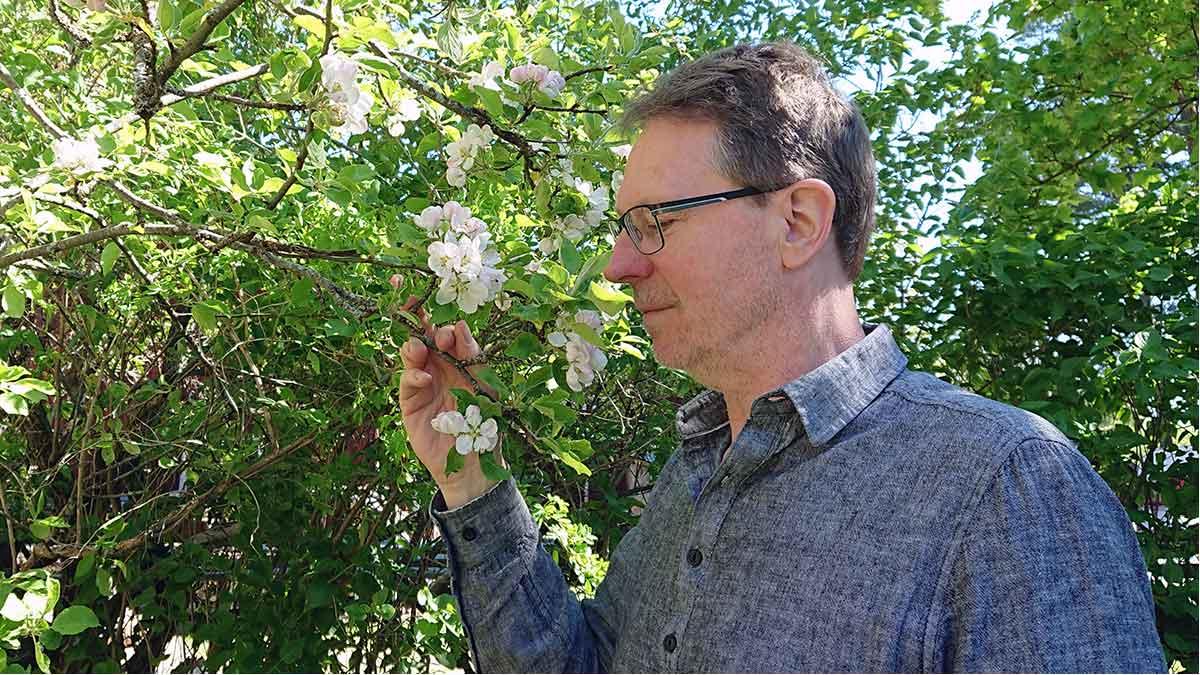 Bar att erkänna. Det bor en Ferdinand i mig. Jag gillar att lukta på blommorna. Det är ett sätt som hjälper mig att odla min självbild.